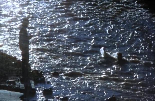 avlcsnap-2016-10-14-19h15m40s950